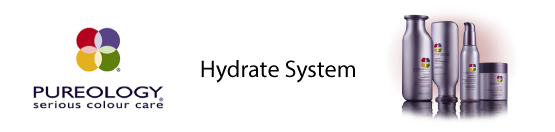Hydrate System